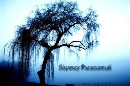 Skyway Paranormal - St Petersburg FL