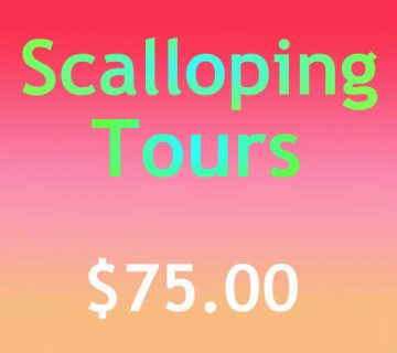 Scalloping Tours Page