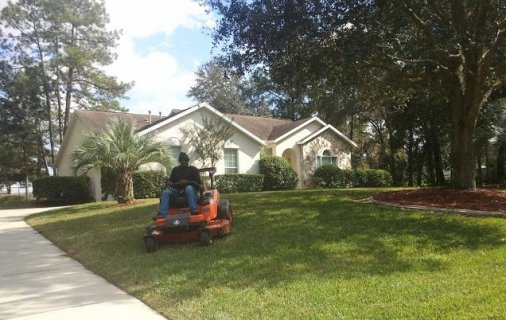 Lawn Care and Maintenance  Page