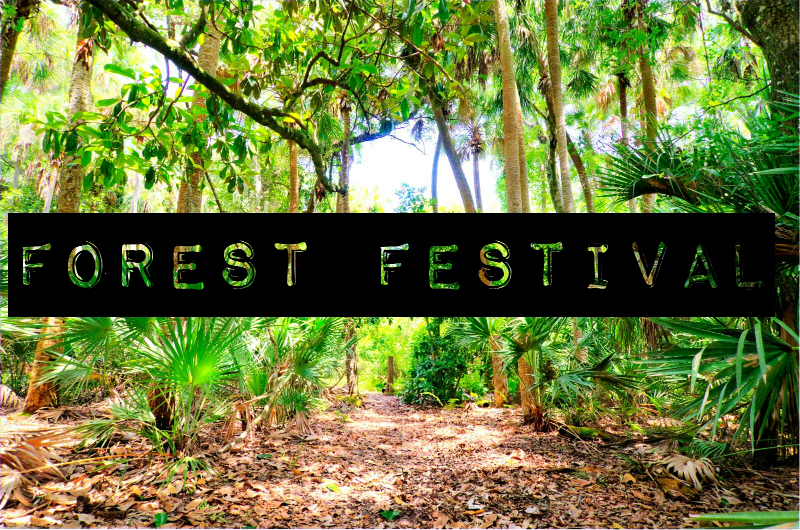 Forest Festival