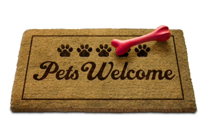 ​Pet Friendly Vacations