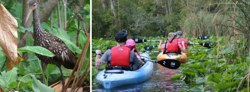 Central Florida Kayak Tours