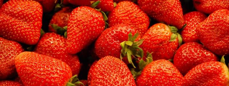 Strawberry Festival 2015