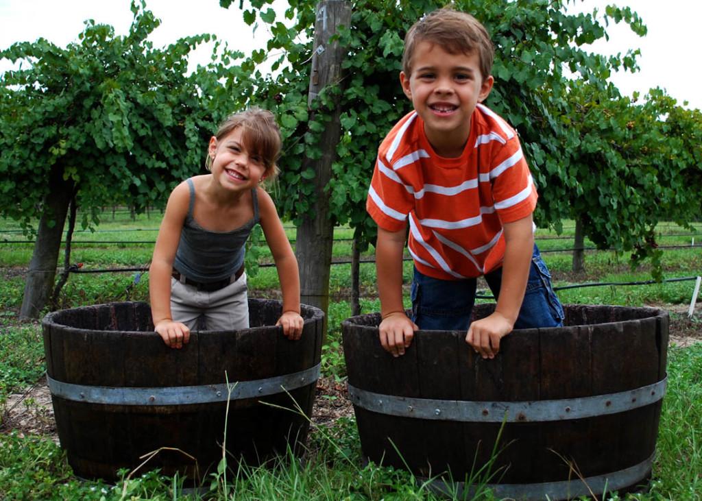 Annual Harvest Grape Stomp