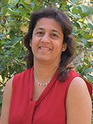 Shaida Saju