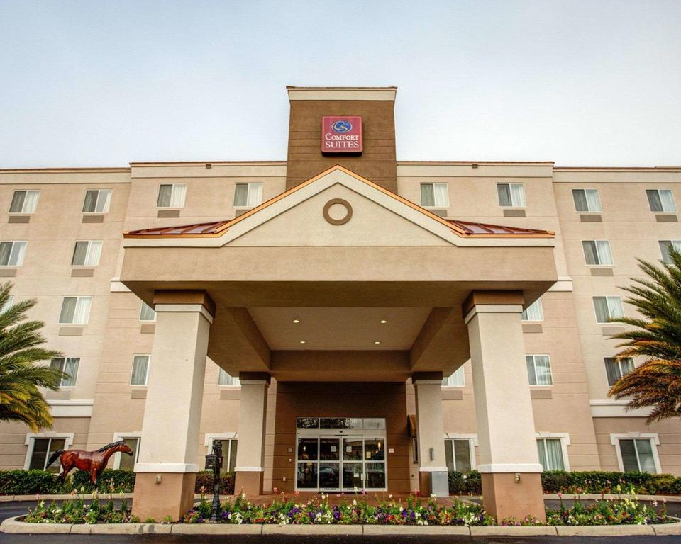 Comfort Suites Ocala North - Ocala