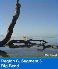 Segment 6