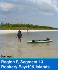 Segment 13