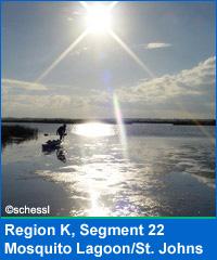 Segment 22