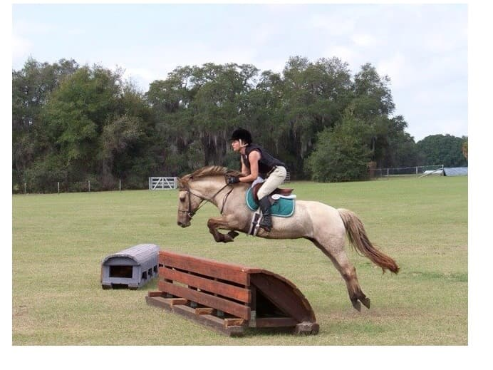 Jamie Cohen jumping her horse Cocoa over a competative horse obstical