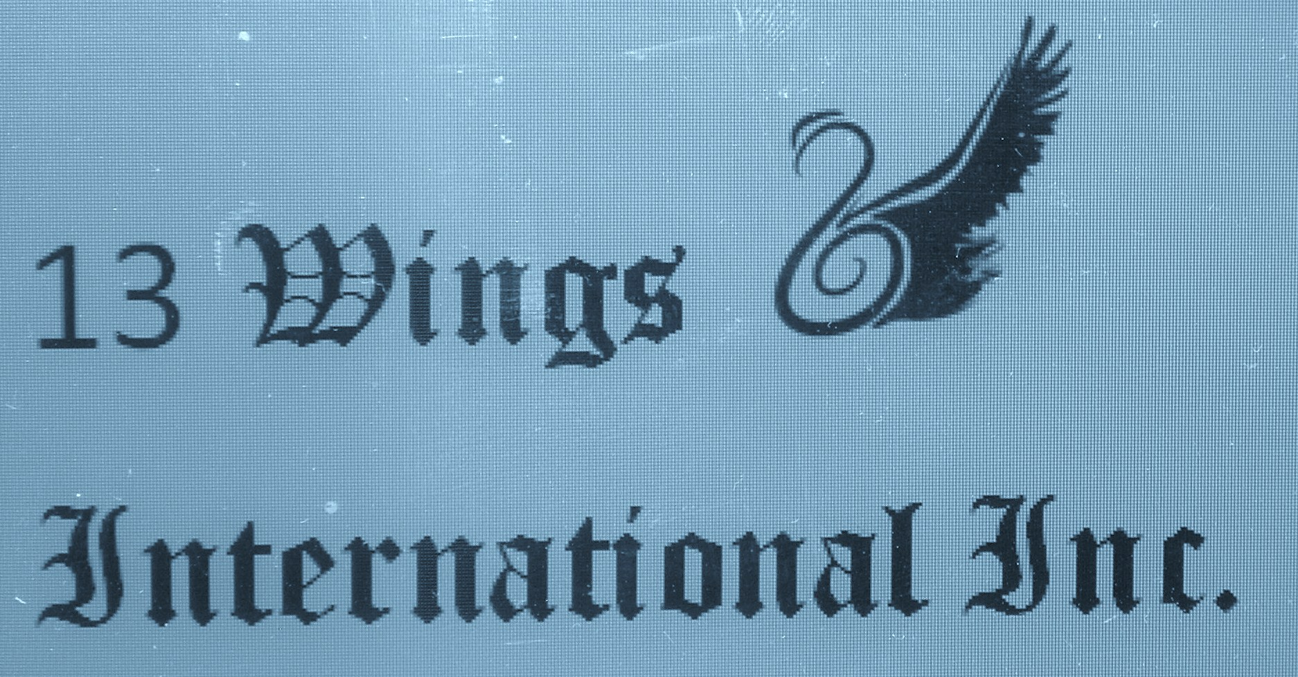 13 Wings International