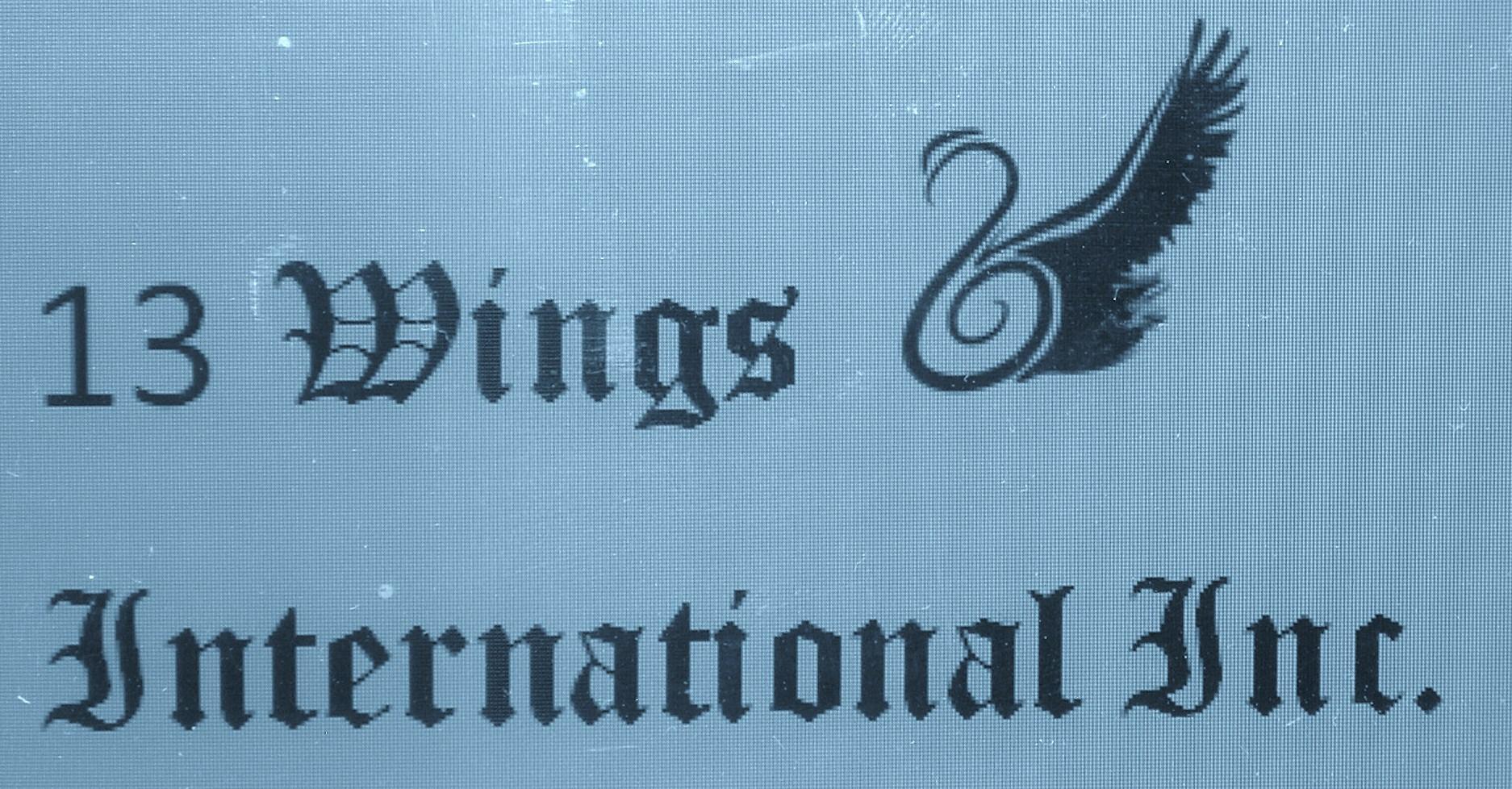 13 Wings International