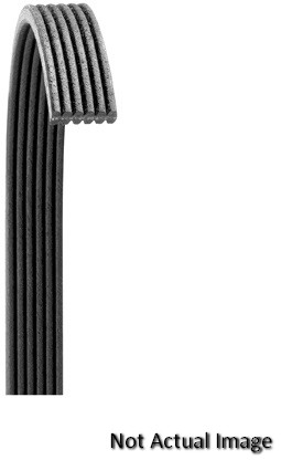 Dayco 5060473 Serpentine Belt Fits 1984-1986 Ford Tempo