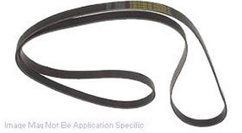 Dayco 5061090 Serpentine Belt Fits 2000-2001 Lincoln LS