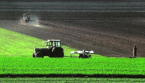 campi trattore