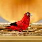Singing bird box
