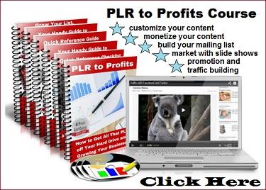 PLR to Profits course