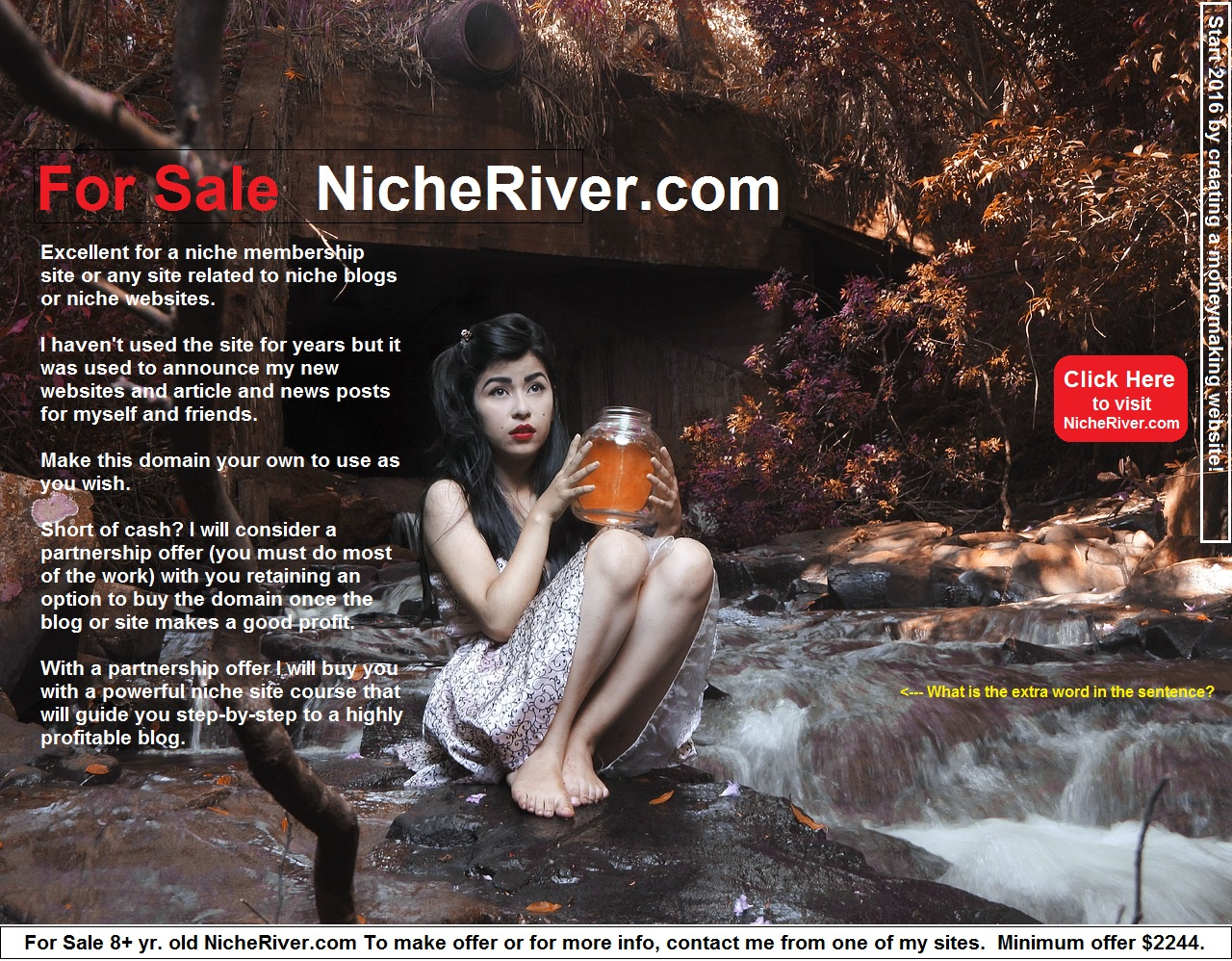 nicheriver.com for sale