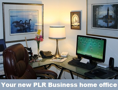 plr business