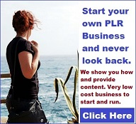 start your own plr business
