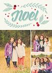 Noel Berries