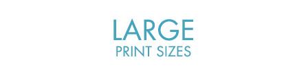 Medium Prints