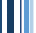 MULTI-STRIPE BLUE