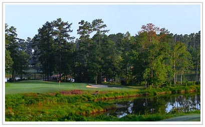 Auburn Alabama Home