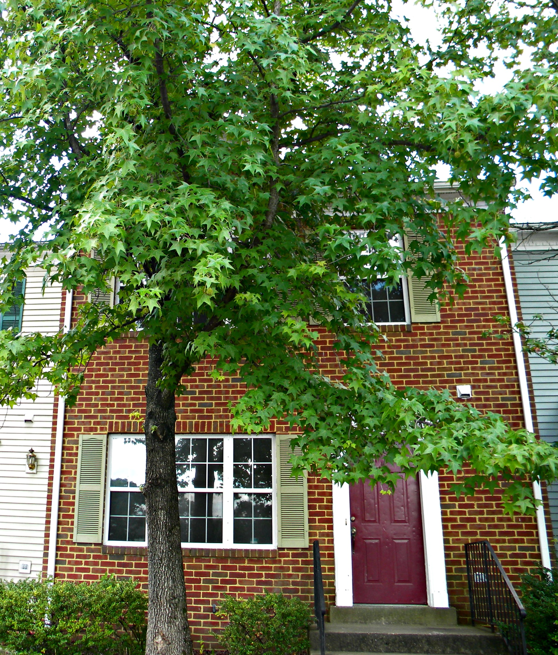 Apt Complex Near Me: Apartments And Houses For Rent Near Me In Dumfries