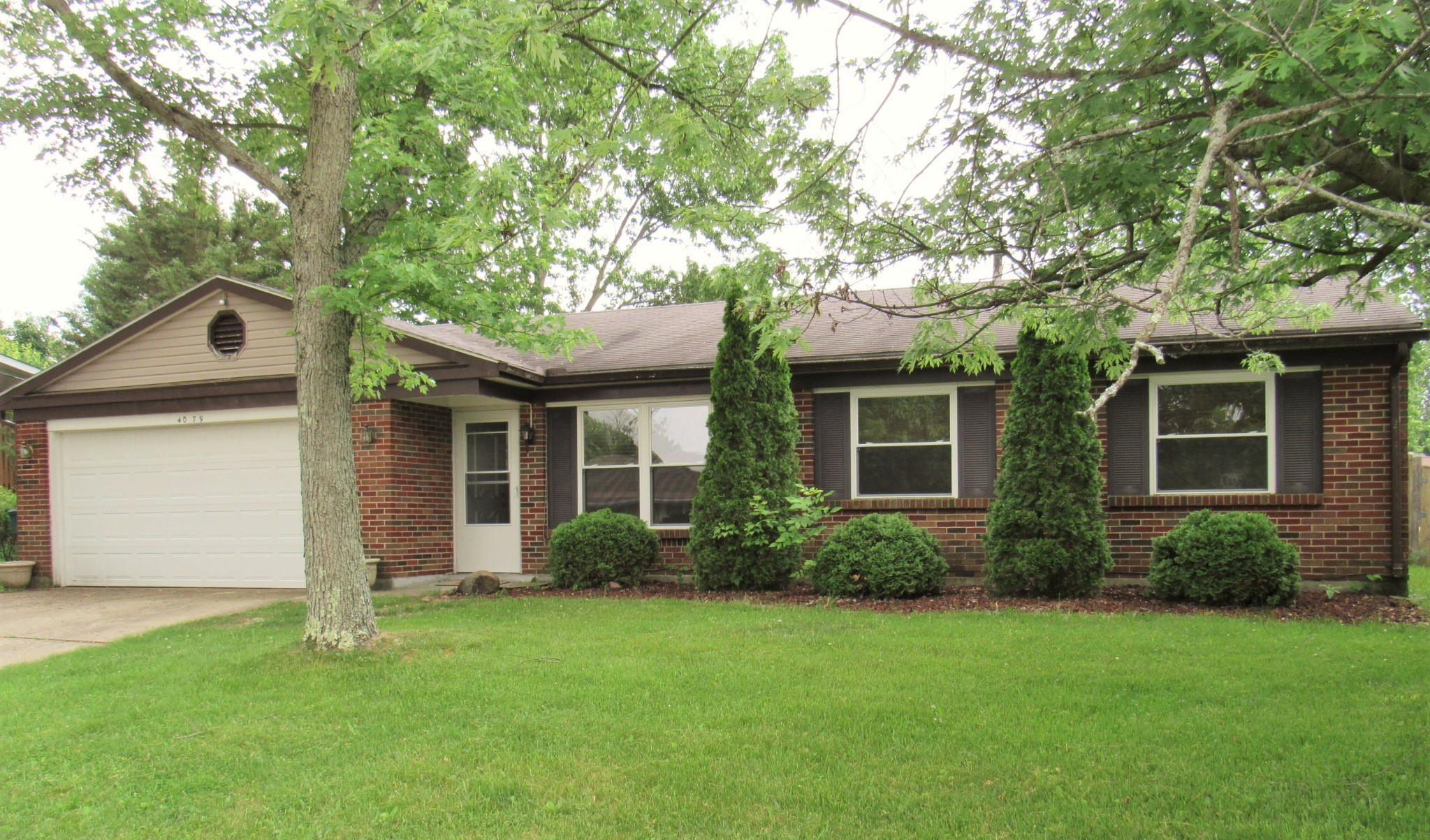 Nice 3 Br Brick Ranch Home with Large Yard