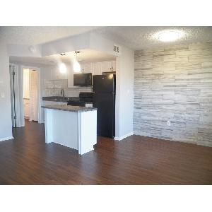 Renovated 1 bedroom Downstairs