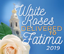 White Roses Delivered to Fatima