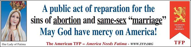"""TMC Rally Captain Banner 2 - A public act of reparation for the sins of abortion and same-sex """"marriage"""" May God have mercy on America"""