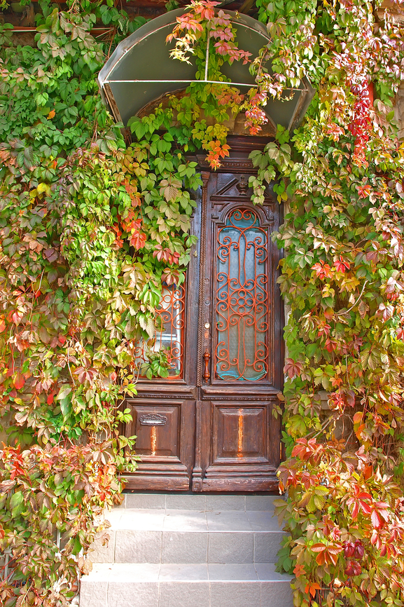 Elegant wood and stained glass front door with ivy wrapped around it