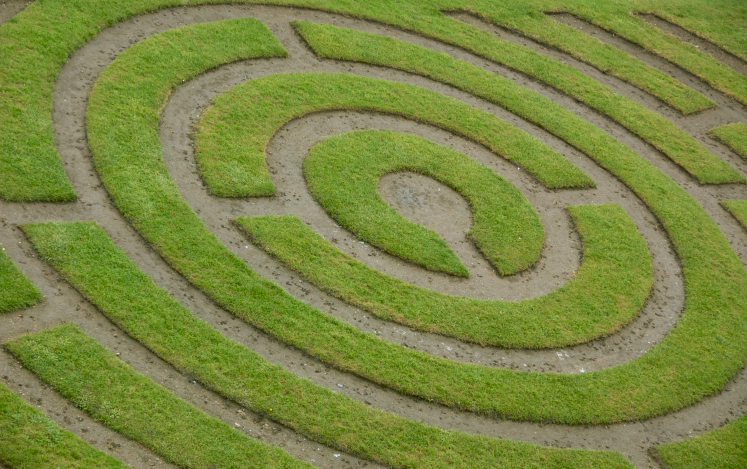 Elaborate grass maze in a circular formation