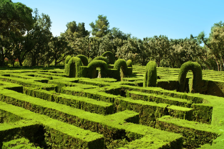 Aged hedge maze with hedge sculptures (called topiary)