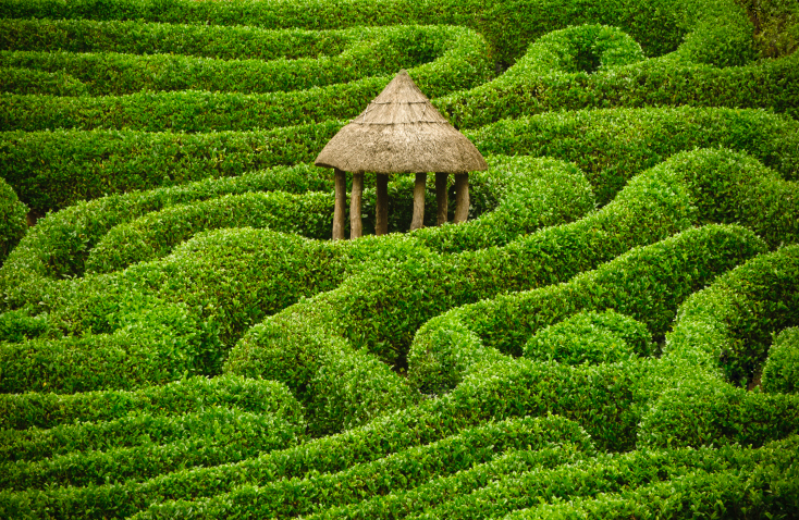 Elaborate free-flowing hedge maze