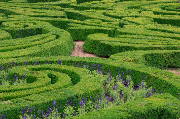 A series of hedge and garden maze-like designs