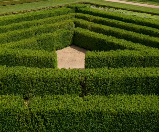 Dark green hedge maze with a triangular design