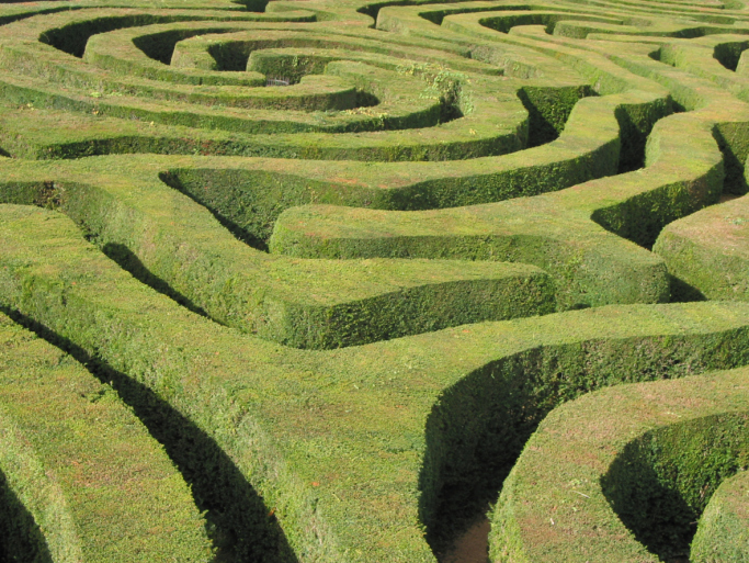 Close-up picture of extensive free-flowing labyrinth garden