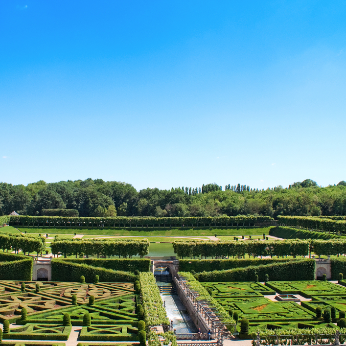 Extensive maze and sculpted gardens