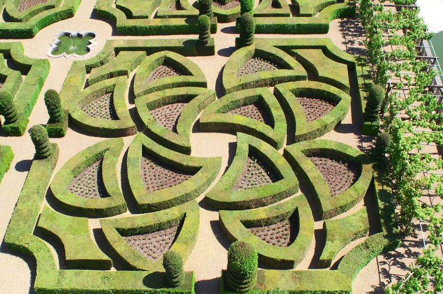 Beautiful hedge geometric shapes laid out into maze-like pattern