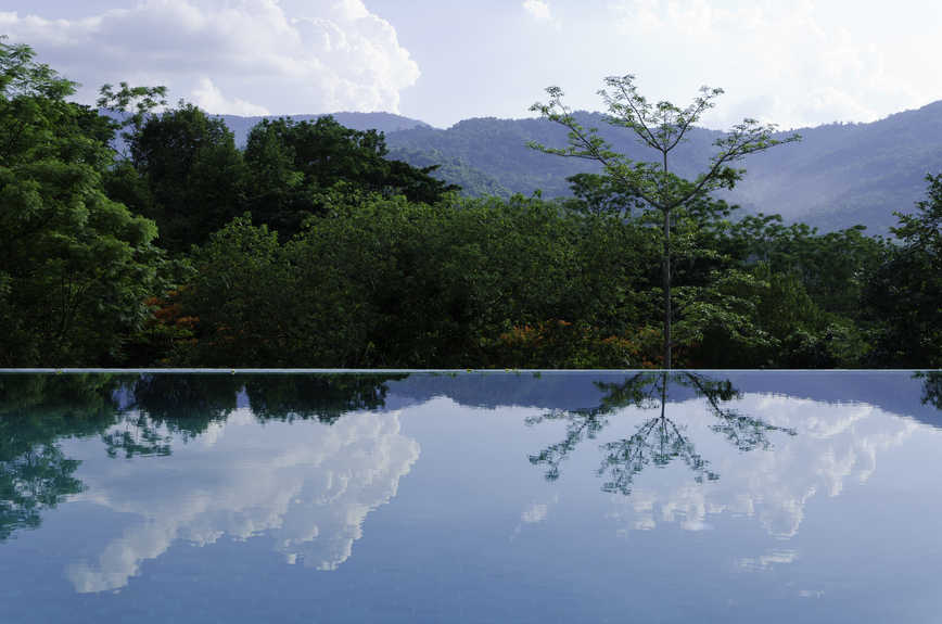 Infinity pool among trees