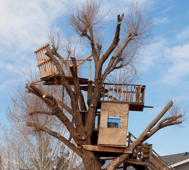 3-level tree house.