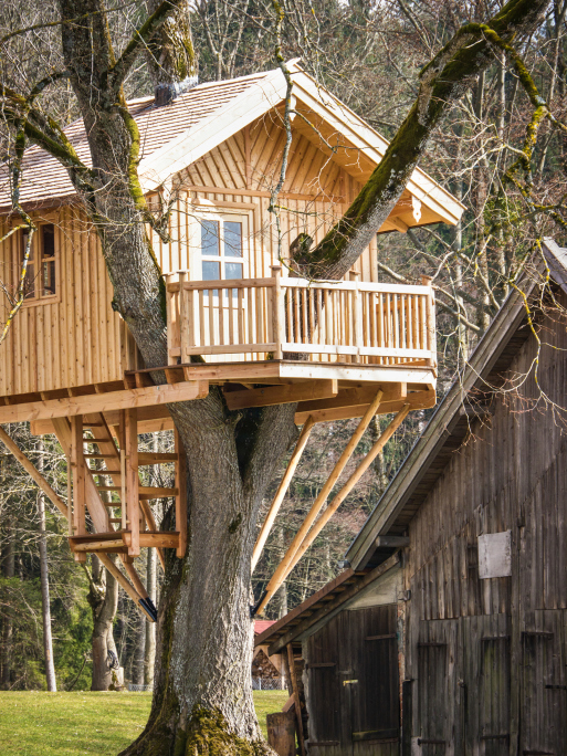 Spectacular And Intricate Kidsu0027 Tree House With Porch And Windows.