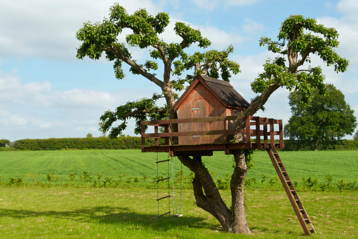 Tree House Built In The Crook Of 2 Trees With Wrap Around Porch And Roper