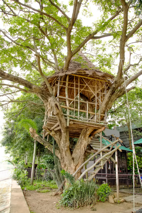 70 Fun Kids Tree Houses Picture Ideas And Examples
