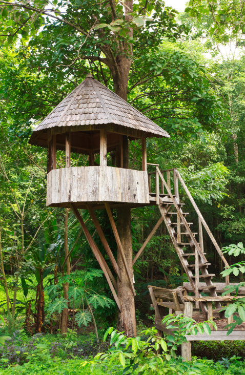 Round tree house built in one tree with stilts extending from the tree  trunk for support