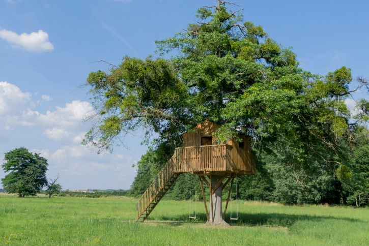 Beautiful kids' tree house built in a large tree with staircase for access.