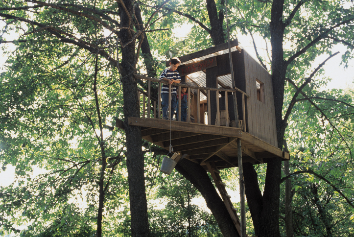 37 pictures of super fun kids 39 tree houses